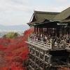 Into Kyoto